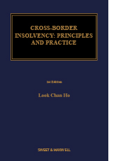 Cross-Border Insolvency: Principles and Practice