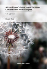 Practitioner's Guide to the European Convention on Human Rights, A